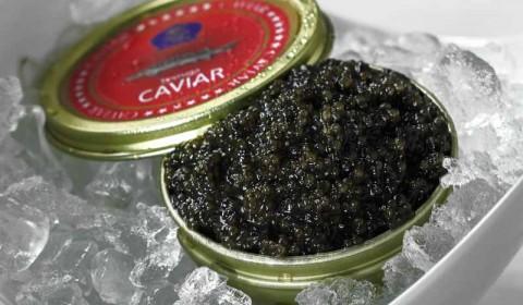 Sevruga Kaviar